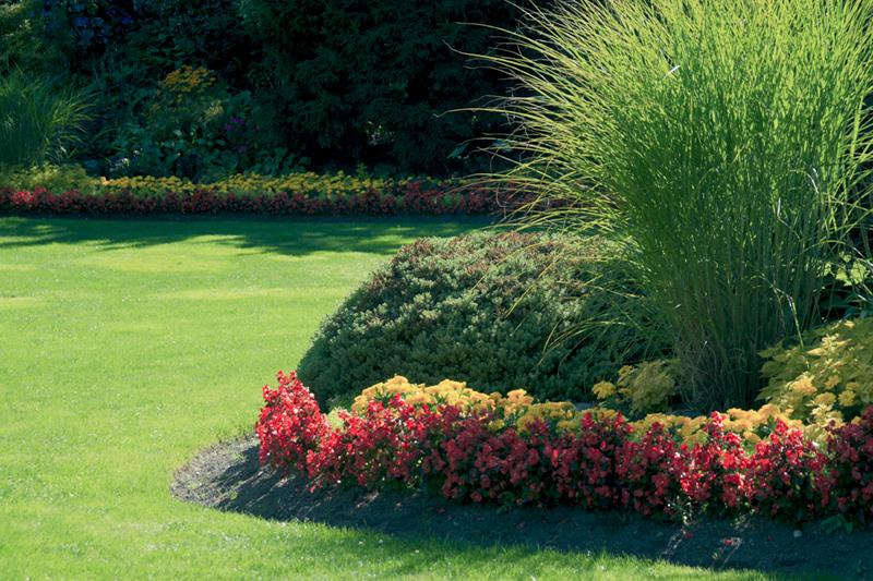 Page 3 giardini floricoltura minetti - Piedra para jardineria ...